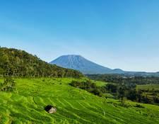 アグン山と棚田