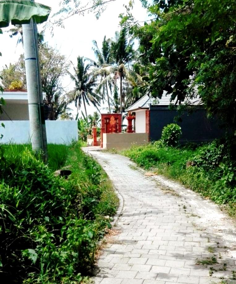 ウブドの散策道7